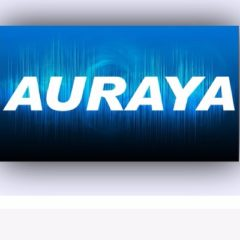 Auraya Systems wins Export Awards for growth in Global Markets